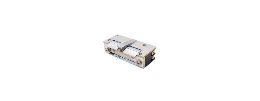 Deursloten 5 series Mini houdkracht 500 kg met schootgeleider